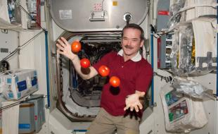 Chris Hadfield juggles tomatoes on the ISS.