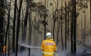 A firefighter manages a controlled burn near Tomerong, Australia, on January 8, 2020. (AP Photo/Rick Rycroft)